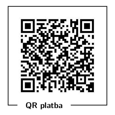 Ukázka QR platby